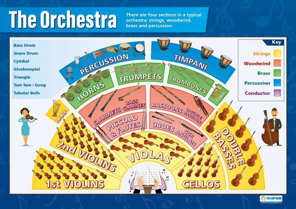 Typical orchestra layout
